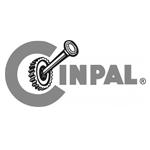 Cinpal Rex1